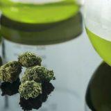 Kannabis: Vastaus A-klinikkasäätiön ylilääkäri Kaarlo Simojoelle, osa 2/3