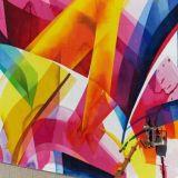 Saksalainen graffititaiteilija Claudia