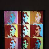 Saatchi Gallery on poptaiteen ystäville