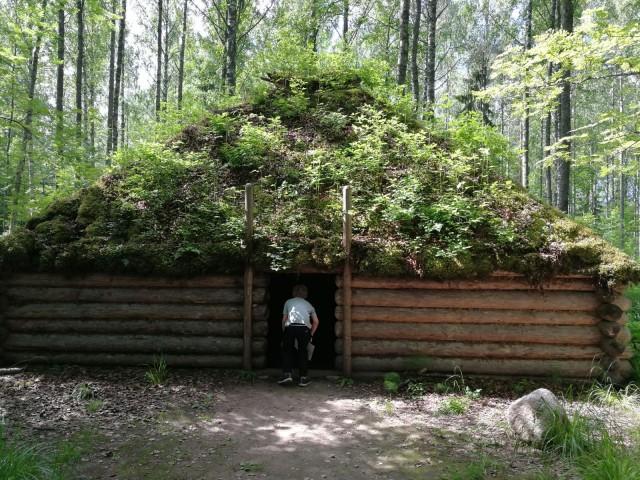 Tämä ruohokatto on tulossa taas muotiin 10000 vuoden hiljaiselon jälkeen.