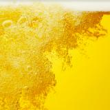 Maailman paras lager tulee Pyynikin Käsityöläispanimolta