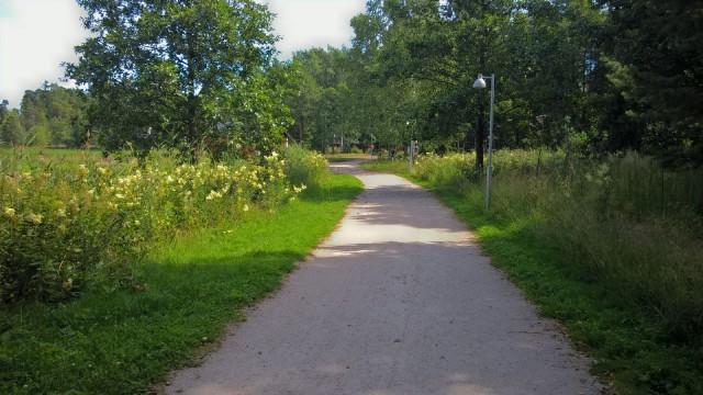 Luontoympäristössä on nautinnollista kävellä.