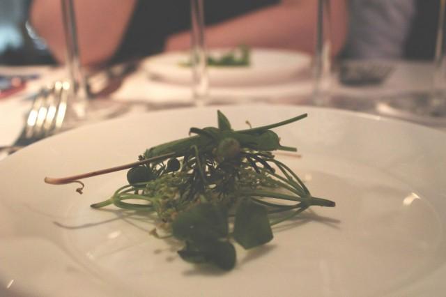 Säsong-illallisilla pääosaa näyttelevät usein itse kerätyt yrtit.