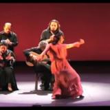 Koe Flamencoa suoraan maailman kirkkaimmalta huipulta