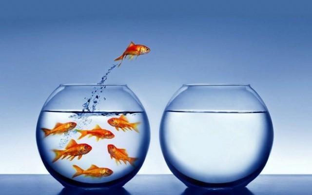 Rohkeus ei tarkoita sitä, ettei pelota, vaan sitä, että tekee vaikka pelottaa