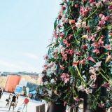 Värikäs kukkaisvoima täyttää kaupungin – Ihana Helsinki -festivaali järjestetään toukokuun lopussa