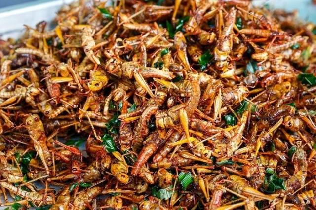 Hyvin maustetut ja paahdetut sirkat sopivat esimerkiksi salaatin lisukkeeksi.