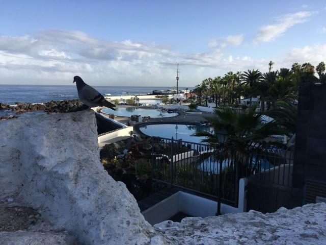 Puerto de La Cruzista on helppo tehdä päiväretkiä paikallisten asuttamiin lähikaupunkeihin.