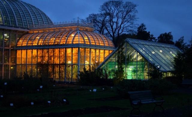 Kasvitieteellinen puutarha tuo valoa pimeyteen.