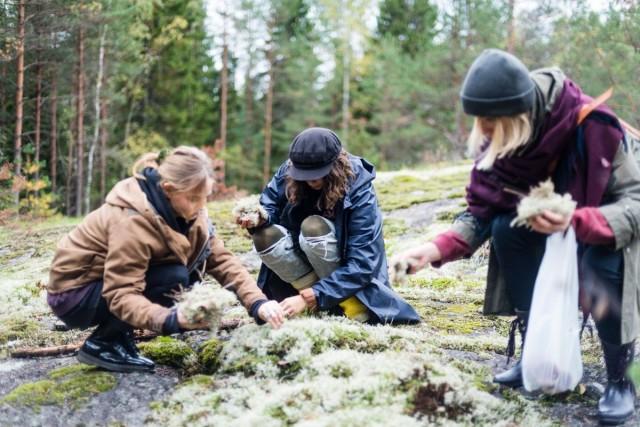 Veera Varvikko (vas.) ja Kaisla Rantala ovat keränneet Magun keittiöön luonnonantimia yhdessä ystäviensä kanssa. Reetta Koivukoski (oik.) on auttanut keräilyssä.