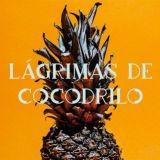 Suomalaisyrittäjä haluaa costaricalaisten maistavan omaa lääkettään – Aki Arjola kehitti maailman ensimmäisen ananaksesta tuotetun vodkan