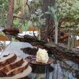 Illallinen metsässä on unohtumaton elämys – Ylistävät arviot saaneelle pop up -ravintolalle janotaan jatkoa