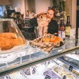 Fiilis Café & Bistro – paikallisen pientuottajan ystävä ja Onni-koiran oma mesta