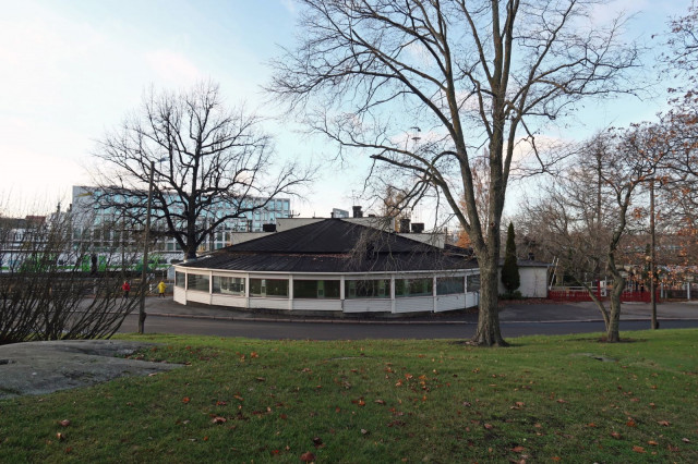 Huonokuntoisen Ravintola Kaisaniemen katon läpi kasvaa puu.