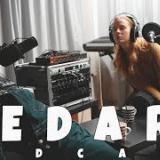 HEDARI Podcast #98: Kuluneen vuoden kauneus ja rumuus