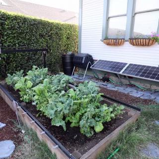 Kasvimaarobotilla oma ruokatuotanto haltuun