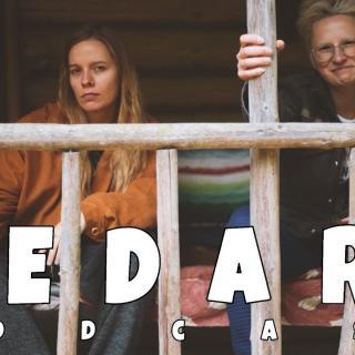 HEDARI Podcast #90: Vain Suomi jutut