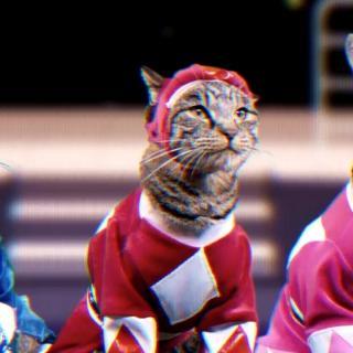 Power Rangers sai oman kissaversion: täältä tulee Meower Rangers