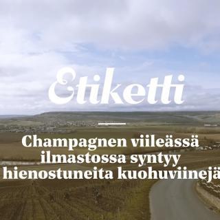 Miksi Suomen alkoholilaki pitää vapauttaa?